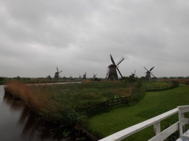 Windmills (Large) (2)