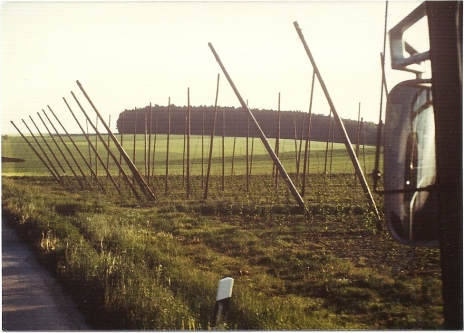 Stalag VII A hill